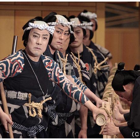 シネマ歌舞伎『め組の喧嘩』歌舞伎大向による解説付き上映会開催!★歌舞伎観劇手帖プレゼント