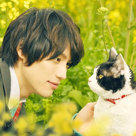 """10/26(金)公開「旅猫リポート」""""にゃん""""でも拭けるウェットティッシュを5名様にプレゼント!"""